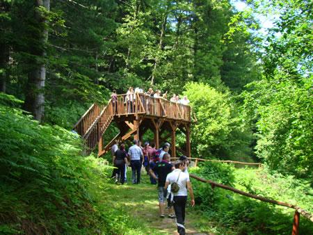 Nga vizita studimore ne Parkun Kombëtar Pelister