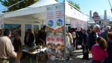 Во Корча, во рамките на 25-годишнината од албанско - германската економска и културна соработка меѓу двете земји, се одржа еден настан каде се претставија проектите во регионот на Корча - […]