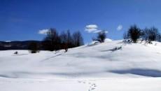 Kështu duket Golloborda nën dëborë, nga 25 nëntori kur ra dëbora e parë, komunat Steblevë, Trebishtë dhe Ostren, në zonën e Gollobordës kanë marrë pamjen e zakonshme në dimër. (Makedonium) […]