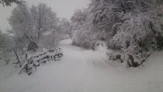 Снежната покривка и поларните температури кои ја зафатија Албанија ги отсече областите населени со Македонско население а некои од нив останаа и без електрична енергија. Областа на Голо Брдо поради […]